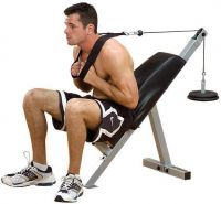 - Body - Solid Ab Bench